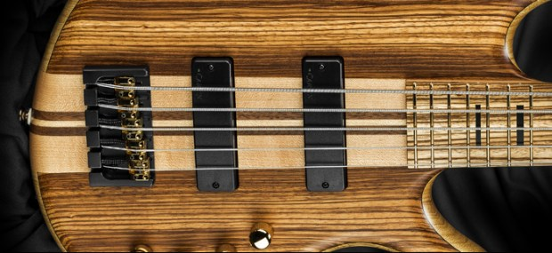 Kiesel Carvin Guitars Icon 2.0 5-string Bass Pickups and Bridge