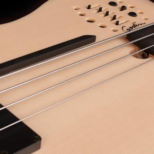 Bass of the Week: Godin A4