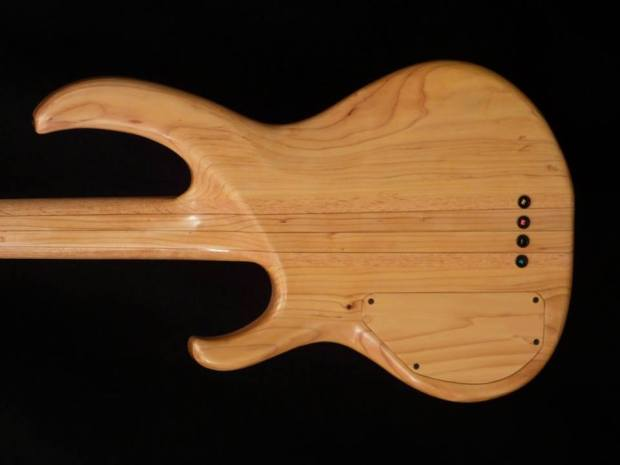 Lea Bass Guitars Dumpster Bass Back