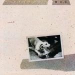 Fleetwood Mac's 'Tusk' Goes Super Deluxe