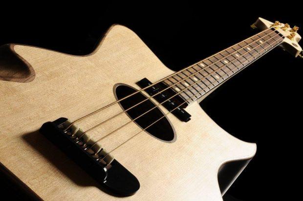 Gillett Guitars Contour Bass Spruce