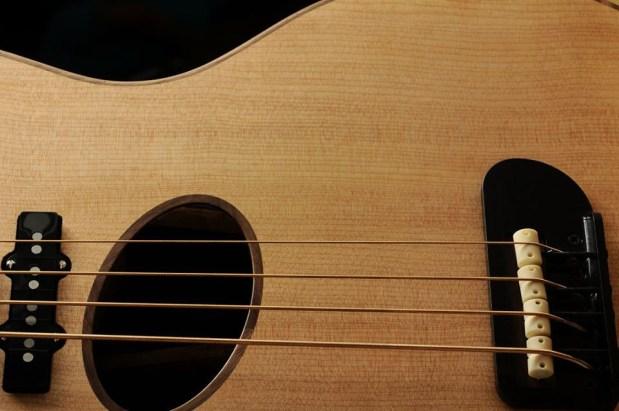 Gillett Guitars Contour Bass Strings