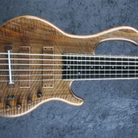 LedBelli Bass Guitars Unveils Majestic Model