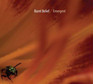 Burnt Belief: Emergent