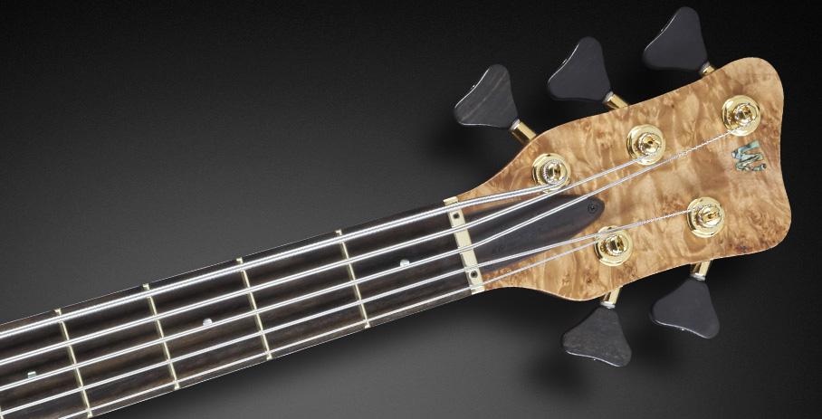 Warwick Thumb NT 5 Limited Edition 2017 Bass Headstock