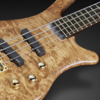Warwick Unveils 2017 Limited Edition Thumb NT Models