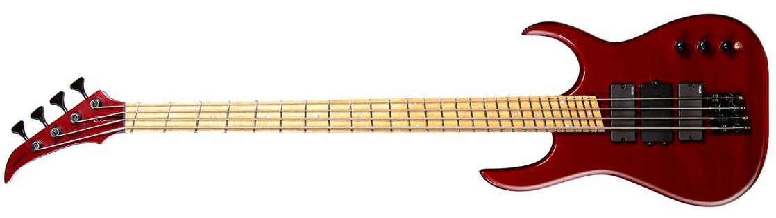 SVS Designs Adapt Bass