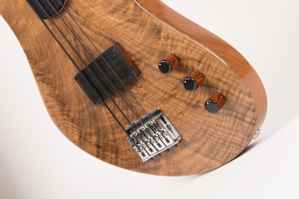 Frederiek de Vette's Singlecut Fretless Bass Controls