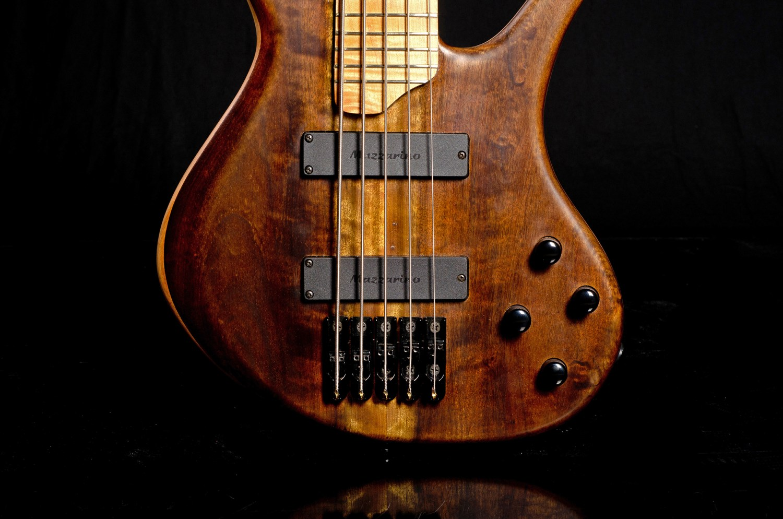 Hernan Gordon Astor Bass Pickups