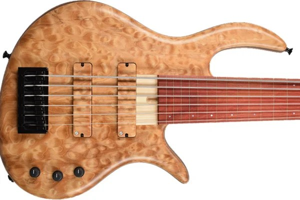 Elrick Bass Guitars Unveils Steve Lawson Custom Fretless Bass