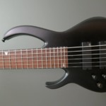 """Bass of the Week: Marc Chicoine Dominic """"Forest"""" Lapointe 6-String Bass"""