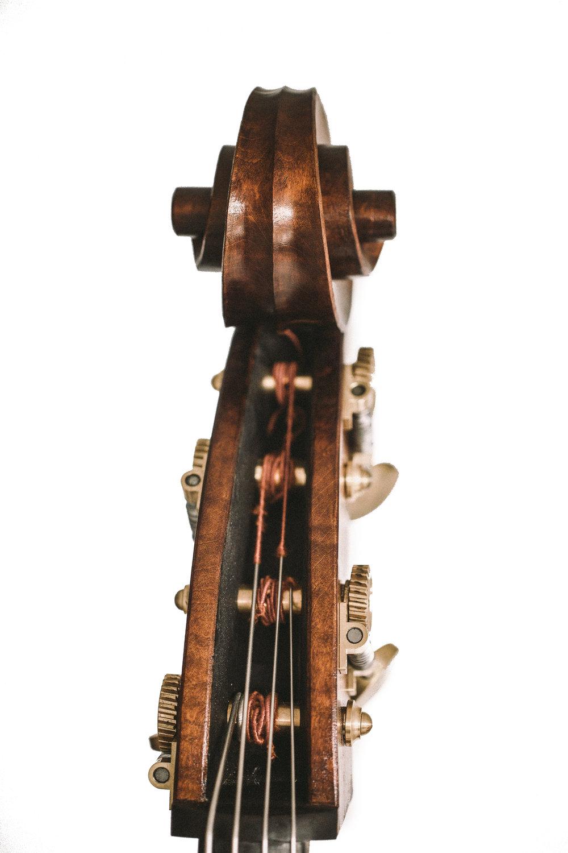 Neal Heppleston Panormo Bass Peg Box