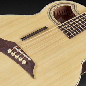 Warwick Introduces RockBass Alien Deluxe Thinline Hybrid Acoustic Bass Guitar