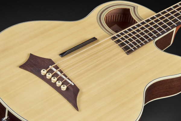Warwick Introduces RockBass Alien Deluxe Thinline Hybrid Acoustic Bass Guitar