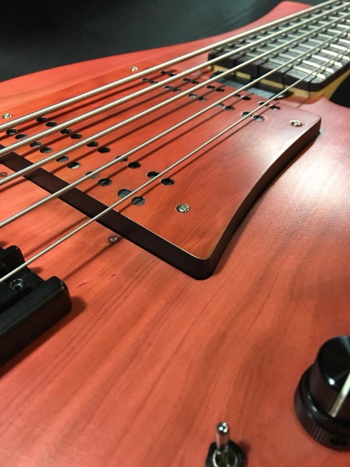 Swan Custom Basses LG II Bass Pickup Cover