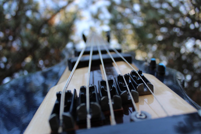 XTRM Basses The Bass of Navarone Bridge View