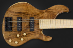 Bass of the Week: Dolan Custom Guitars Proteus Legacy 5-String Active Bass