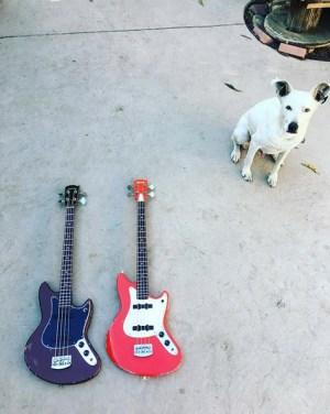 Abernethy Guitars Basses