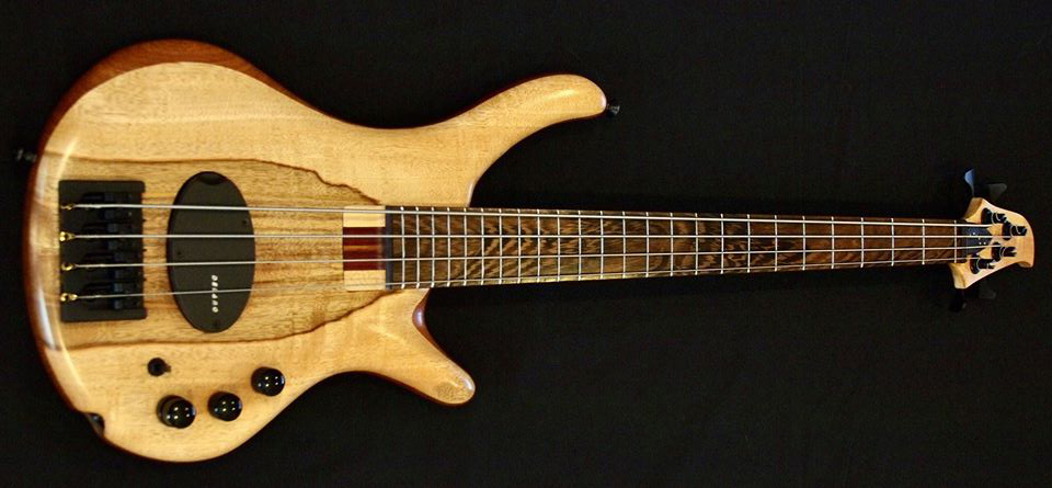 "Polaris Basses Shorty ""Mango"""