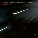 "Wolfgang Muthspiel Releases ""Angular Blues"" with Brian Blade and Scott Colley"
