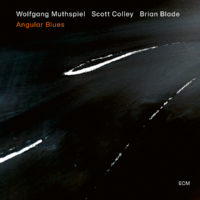 """Wolfgang Muthspiel Releases """"Angular Blues"""" with Brian Blade and Scott Colley"""