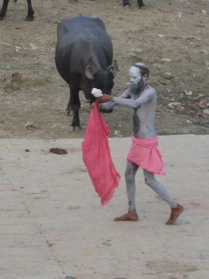 Torero du Gange