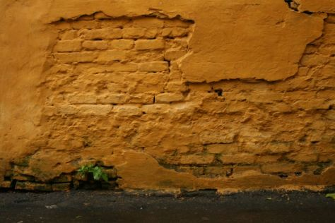 Briques apparentes