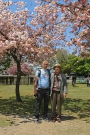 Papi japonais