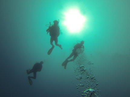 Contre plongée