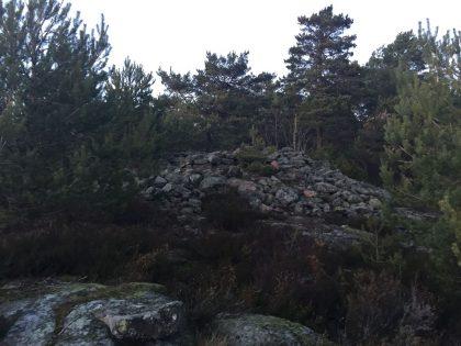 Torød - Foto: Sjur Høgberg