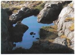 En av dammene på Hestskjær (Portami) fotografert på slutten av tørkesommeren 1992. Folk rodde fra Nøtterøy og ut til holmen for å vaske tøy her omkring århundreskiftet.