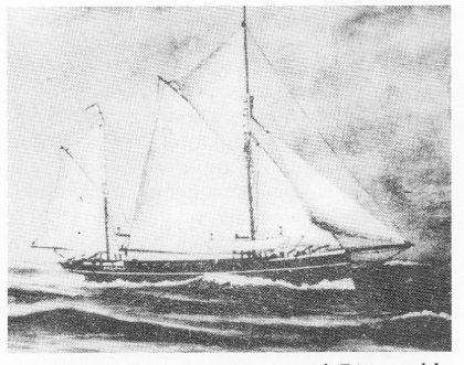 Bottlenosefangeren «Balaena» på 74 tonn ble innkjøpt av Irene Sturøds far Henrik Hansen, Bjerkø i 1903. Den var opprinnelig en brønnkutter (kvase).