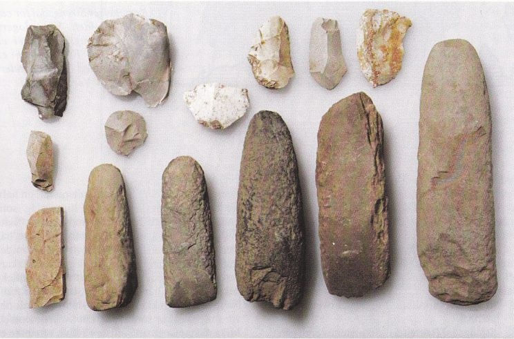Materiale fra sørfeltet. Til venstre for øksene i første rekke ligger en stikkel. (Foto Universitetets Oldsaksamling)