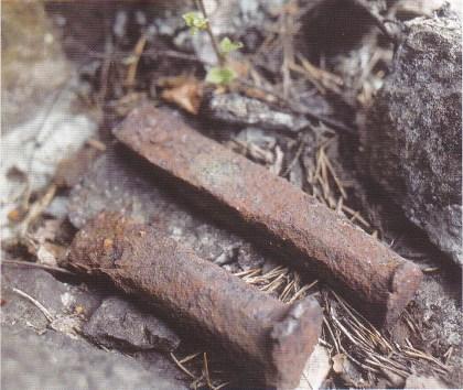 Meisler funnet i brudd i Buerteigen. (Foto: Grethe Horn.)