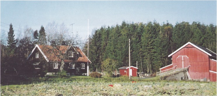 Huset i skogen står der fremdeles. Nå er det ikke hvitt lenger, men brunbeiset og kledd med nye bord. (Foto: S. Hermansen.)