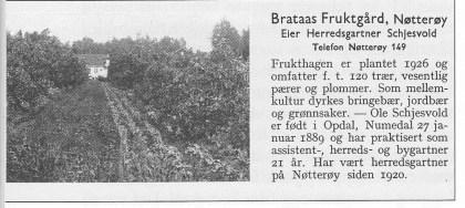 Gartnernæringen i Norge.