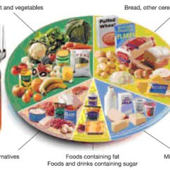 Healthy Food Diagram Microbiology Prokaryotic Cell Labeled Health Promotion - Addressing Malnutrition Nutrition In Wound Healing Practice Learning ...