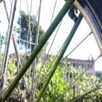 Taller sobre seguretat i bicicleta a Can Masdeu
