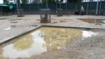 Problemes de drenatge a l'àrea de gossos de la via Favència