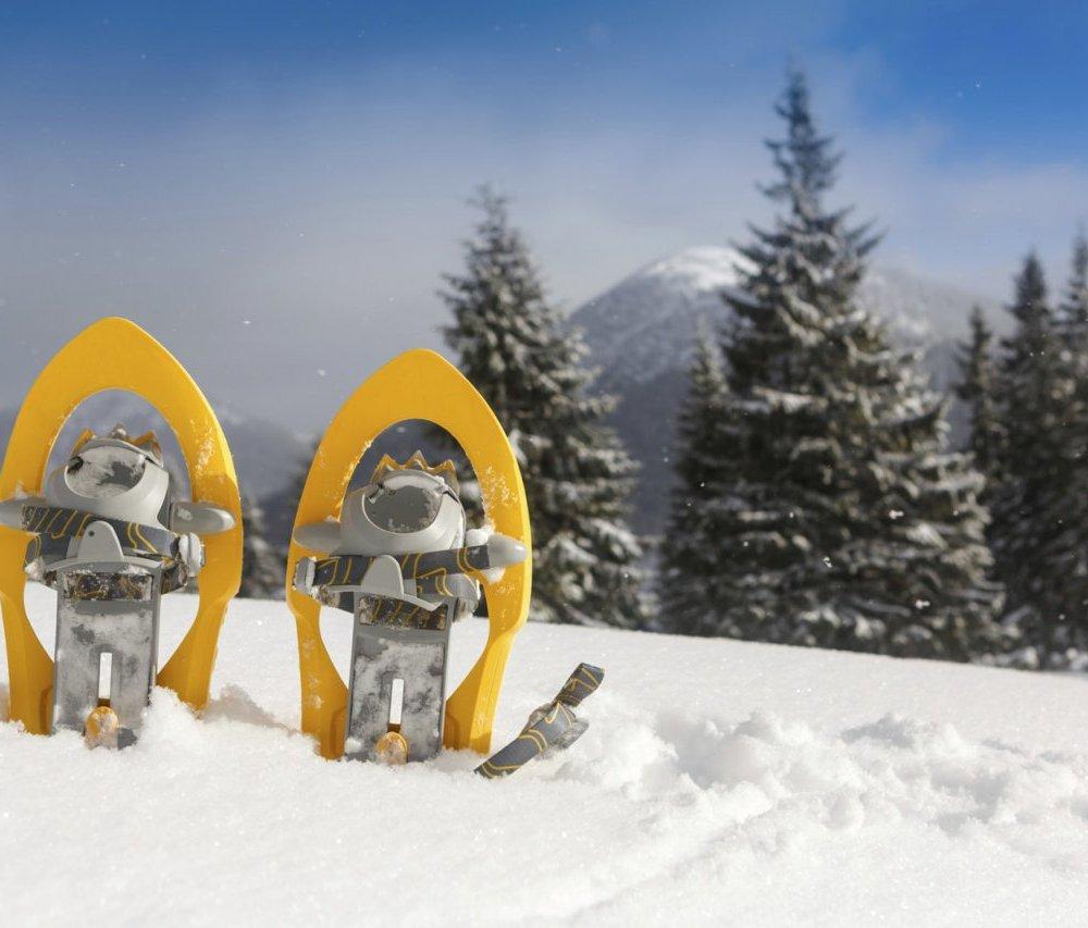Excursions amb raquetes de Neu: