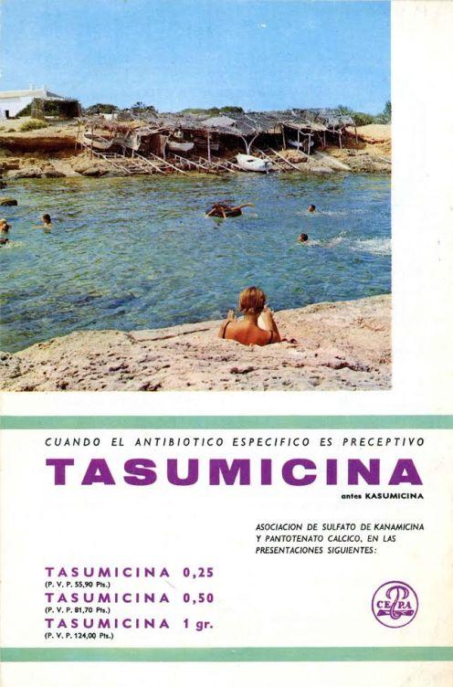 Llibres curiosos. Caminos de España 8