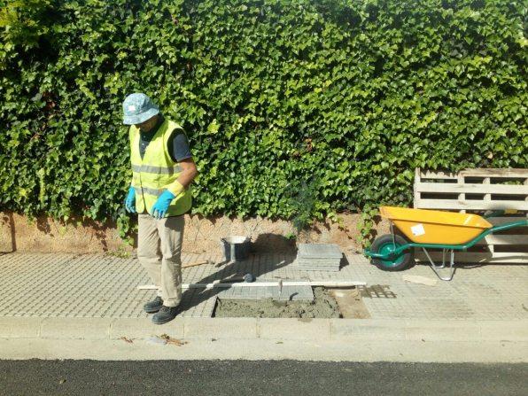 Vila inicia las tareas de replantación de 84 árboles.