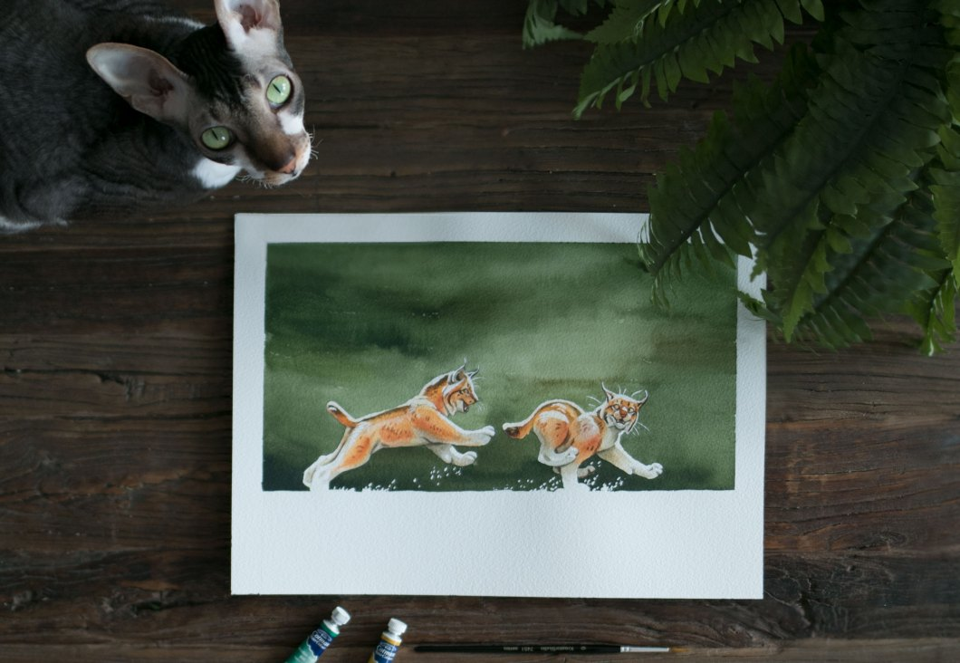 akvarell lodjur