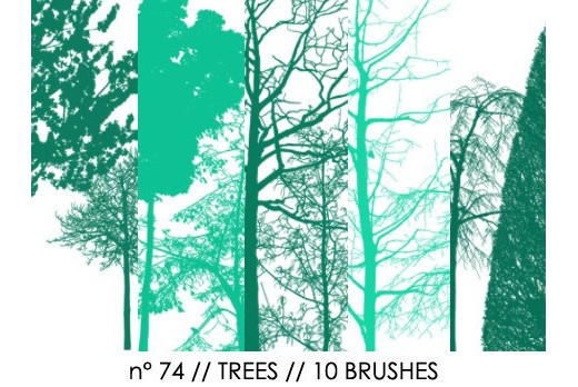 Naturesbrush104 in 100+ Free High Resolution Photoshop Brush Sets