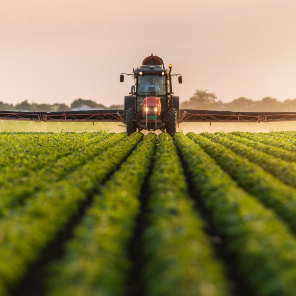 A tractor spraying a field of soybeans