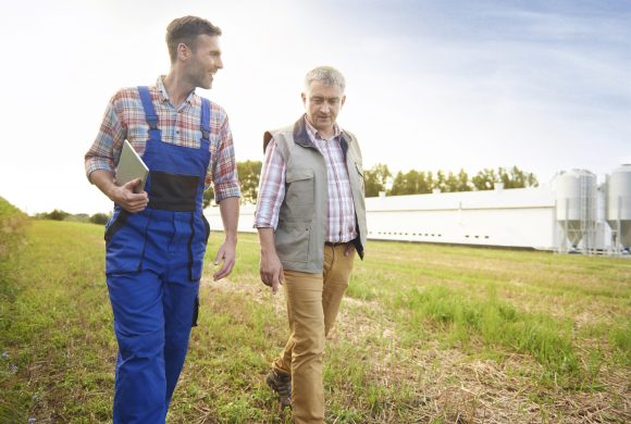 A young farmer and an older farmer walking and talking