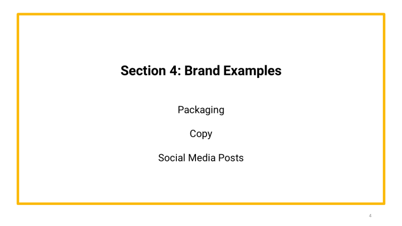 brand primer template section 4 Brand Examples