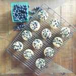 blueberry egg and oat muffins {oats, blueberries, eggs, chia}