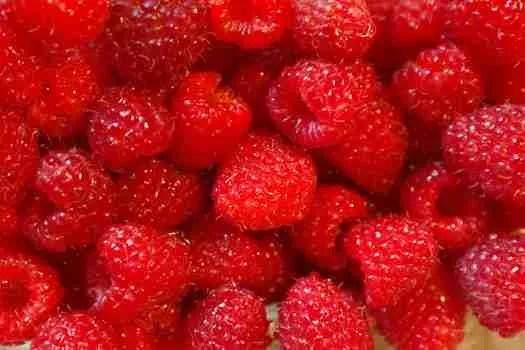 three healthy snack ideas