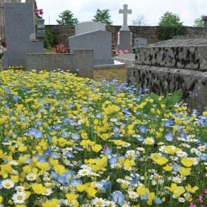 végétaliser cimetière